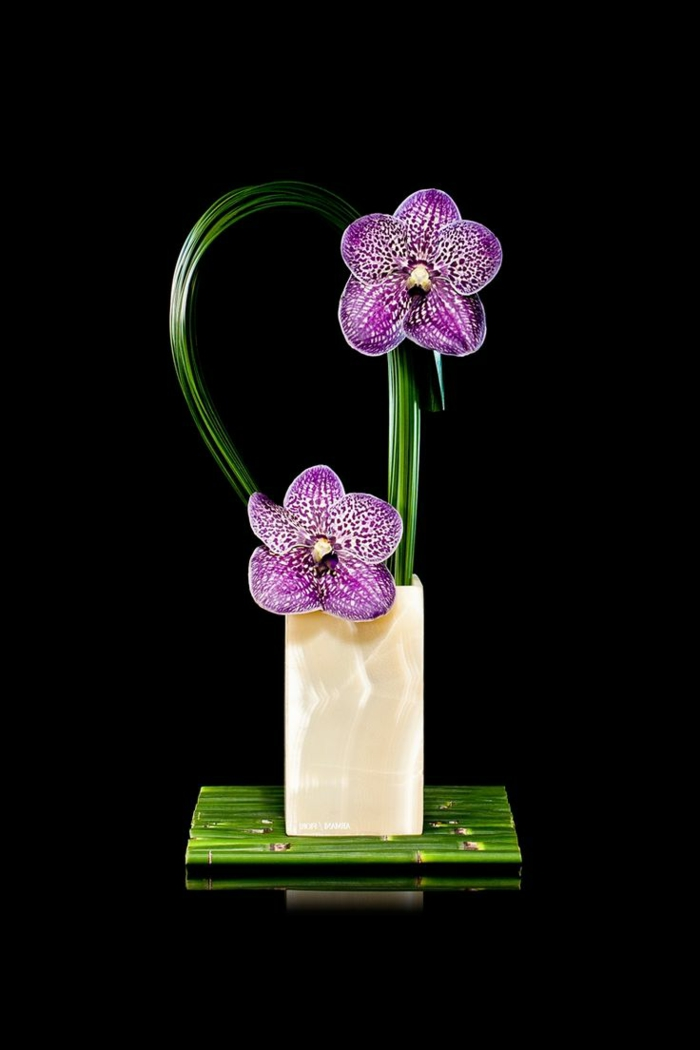 art-foral-moderne-arrangement-simple-contemporain-orchidées