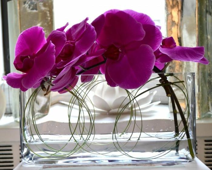 art-foral-moderne-avec-orchidées-pourpres