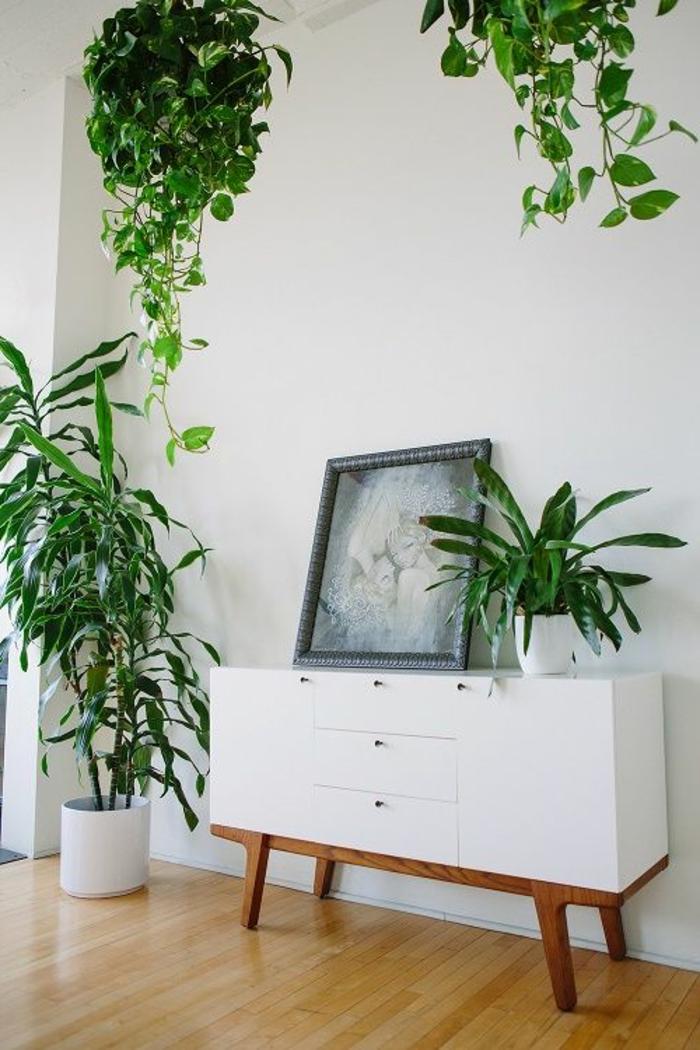 bahut-blanc-blanc-laqué-sol-en-parquette-bois-clair-plantes-vertes-d-intérieur