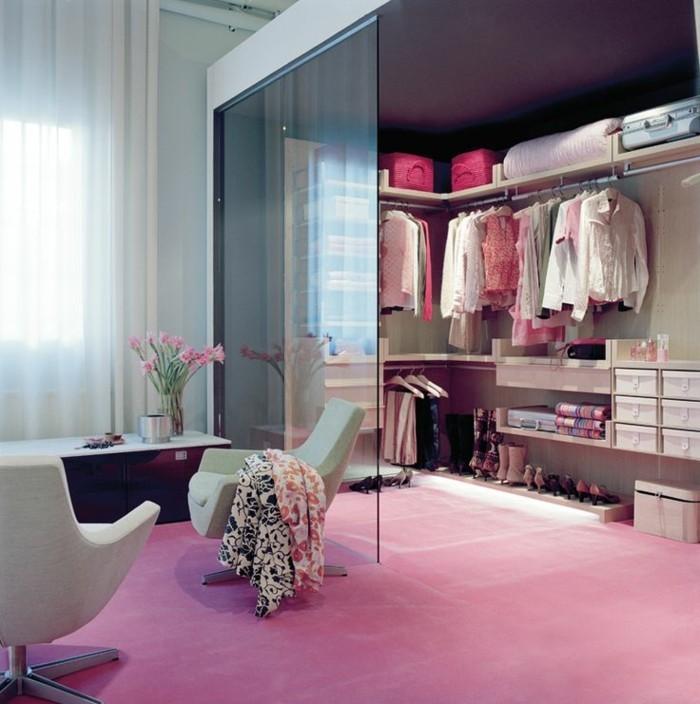 cloison-en-verre-tapis-rose-dressing-et-cloison-en-verre-du-sol-au-plafond