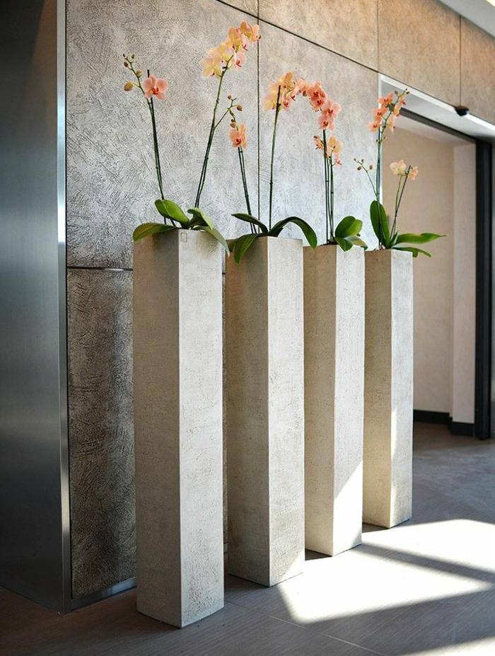 comment-entretenir-les-orchidées-dans-un-office-space-faire-refleurir-une-orchidée