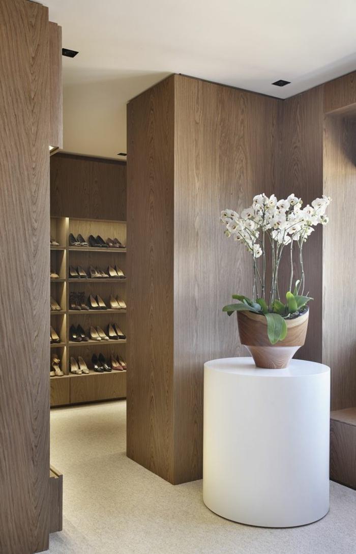 comment-faire-refleurir-une-orchidée-blanche-pour-decorer-l-interieur-chez-vous
