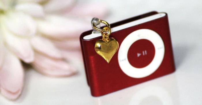 idée-cadeaux-original-cadeau-style-sac-à-main-en-cuir-de-marque-ipod