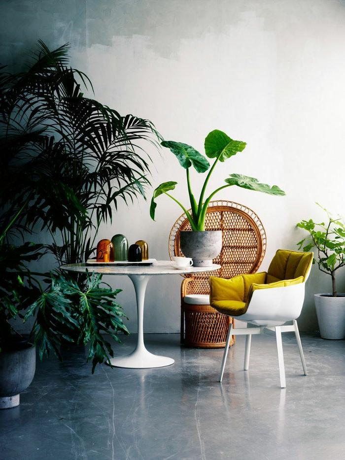 joli-salle-de-séjour-avec-sol-en-béton-ciré-et-plantes-vertes-d-intérieur-et-mur-blanc