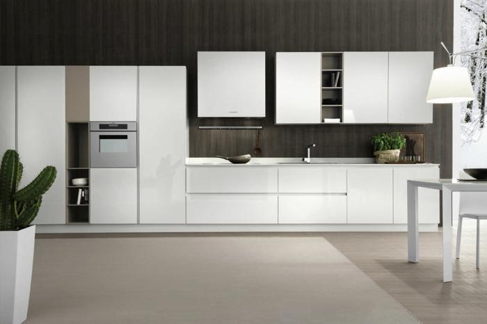 jolie-cuisine-laquée-meubles-de-cuisine-modernes-laqués-mur-marron-foncé