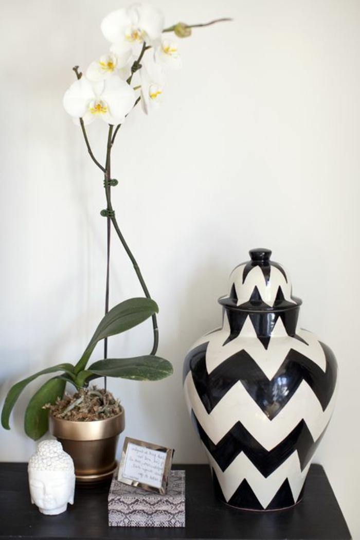 jolie-orchidee-blanche-pour-bien-decorer-le-couloir-dans-votre-maison-moderne
