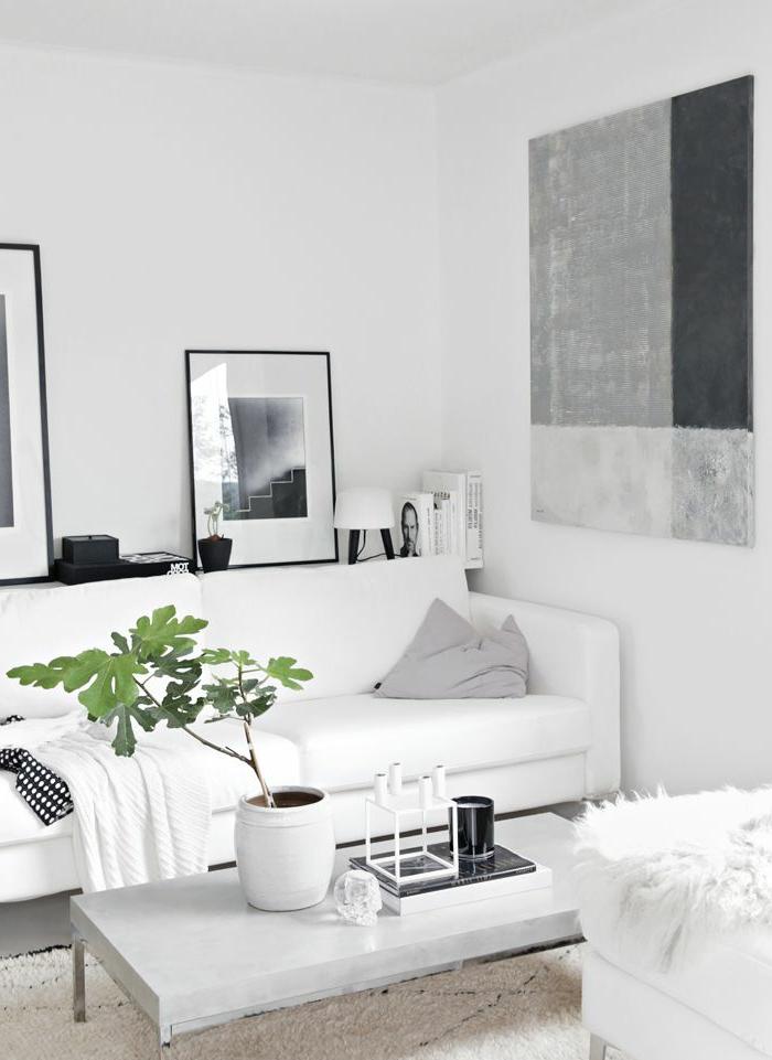 jolie-salon-de-couleur-blanc-tapis-blanc-dans-le-salon-blanc-comment-decorer-sa-maison-pas-cher