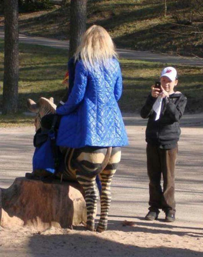 l-image-drôle-animaux-image-drôle-à-télécharger-le-moment-parfait-resized