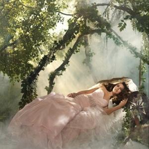 La belle au bois dormant Disney inspiration pour la déco