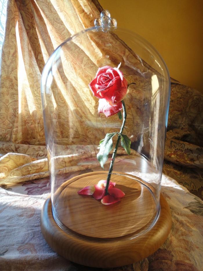 la-belle-et-la-bête-dessin-animé-de-disney-décoration-idées-intérieur-rose-en-verre