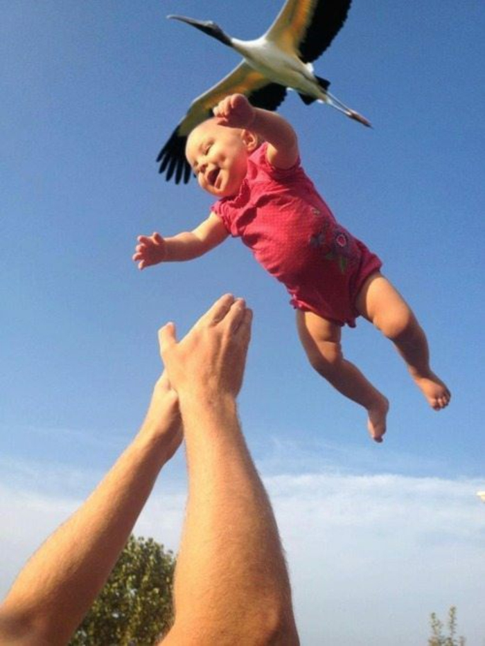 le-moment-parfait-images-drôles-animaux-et-humains-bébé-qui-vient-du-stork-resized