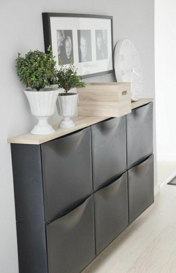 les-meubles-à-chaussures-en-bois-gris-et-plante-verte-dans-le-couloir-moderne-avec-murs-gris