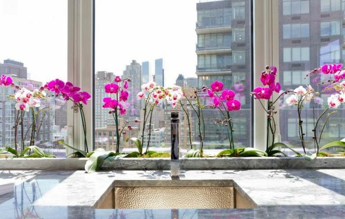 les-orchidées-blanches-comme-un-moyen-original-pour-decorer-la-fenetre