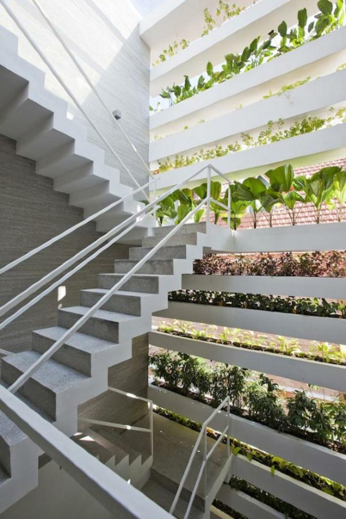 plante-d-intérieur-jardin-interieur-plante-aromatique-plantes-vertes (1)