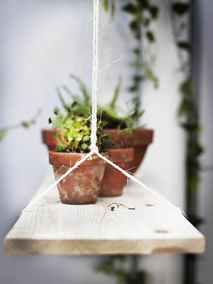 Le potager d 39 int rieur en 50 belles id es for Plante verte jardin