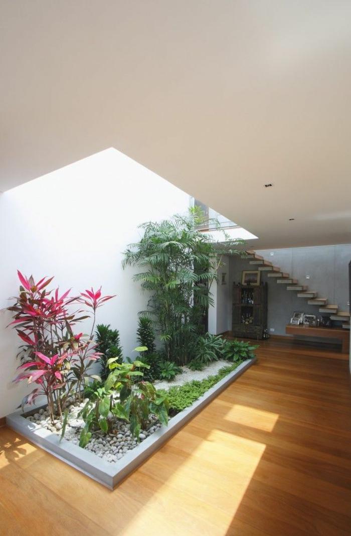plante-d-intérieur-jardin-interieur-plante-aromatique-plantes-vertes (3)