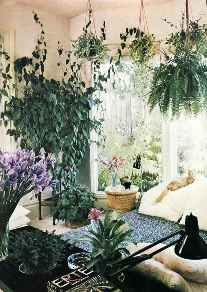 Le potager d 39 int rieur en 50 belles id es for Plantes decoratives interieur