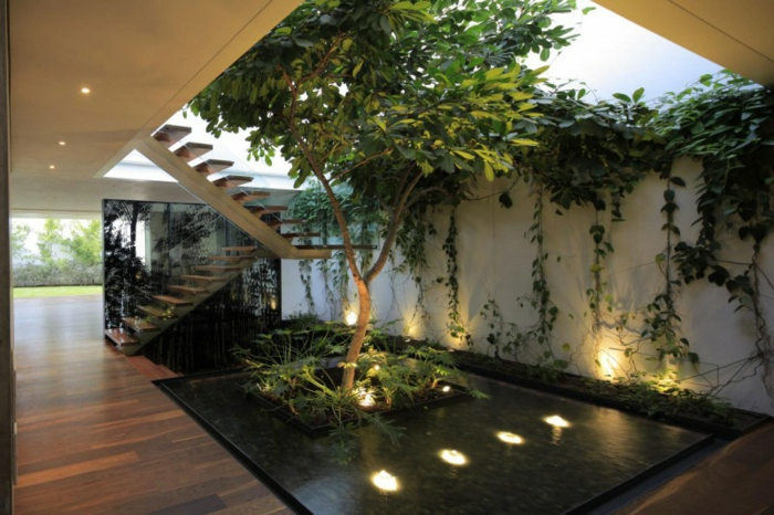 planter-du-basilic-jardin-intérieur-organization-salon-décoration-escaliers
