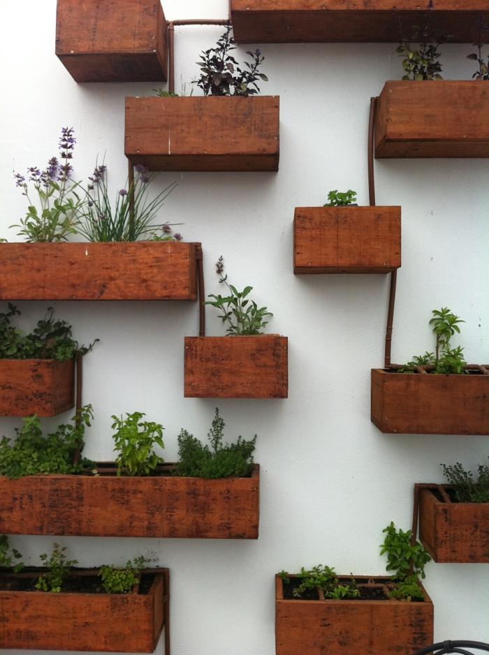 planter-du-basilic-jardin-intérieur-organization-salon-décoration-pots-sur-mur