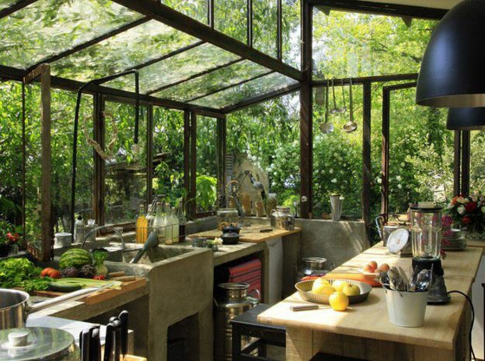 plantes-vertes-d-intérieur-déco-salon-bien-aménagé-orangerie-cuisine