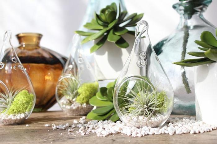 plantes-vertes-d-intérieur-déco-salon-bien-aménagé-pot-en-verre