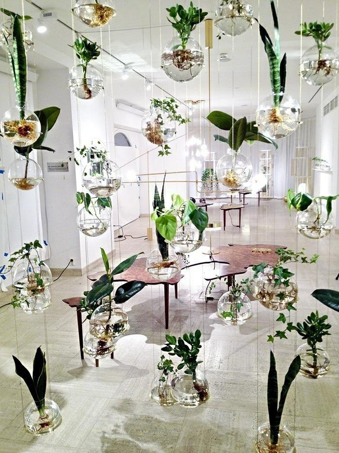 potager-d-appartement-plante-verte-d-intérieur-salle-de-séjour-belle-cuisine