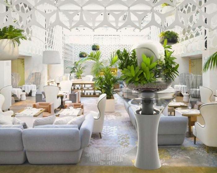 potager-d-appartement-plante-verte-d-intérieur-salle-de-séjour-canapé-tapis