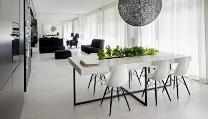 potager-d-appartement-plante-verte-d-intérieur-salle-de-séjour-et-salle-à-manger-blanc-et-noir