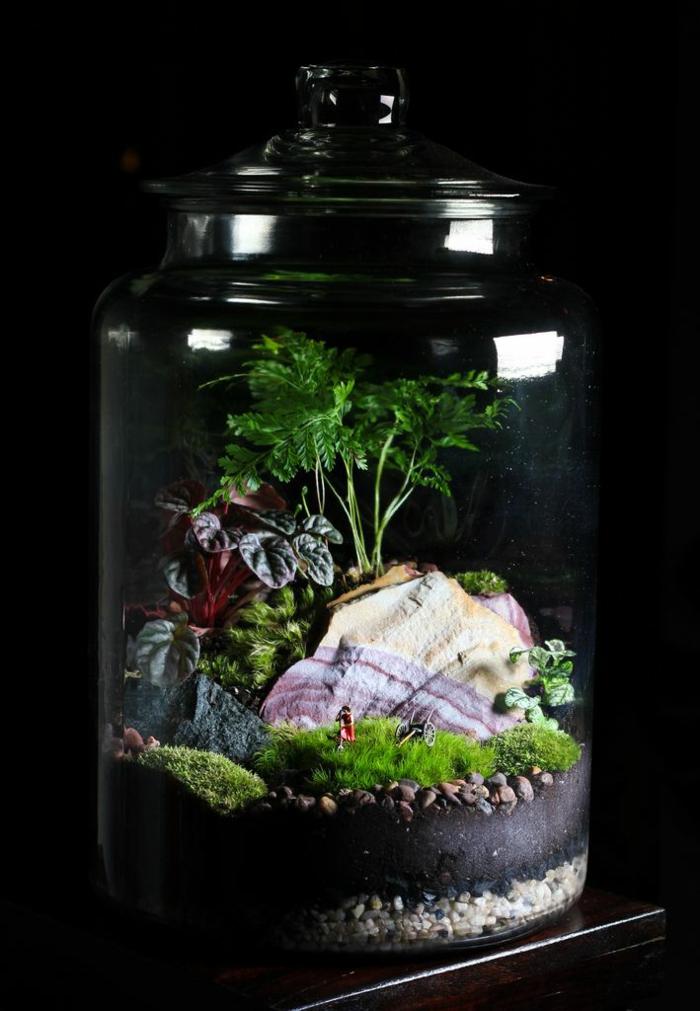 potager-d-intérieur-faire-pousser-de-la-menthe-jardin-intérieur-beauté