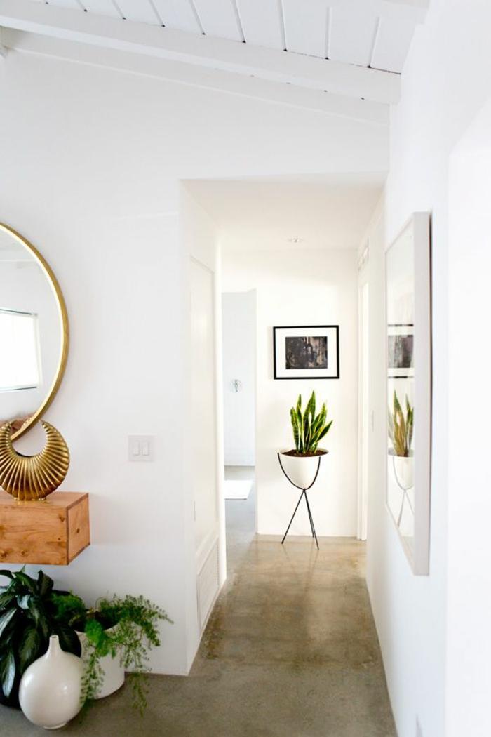 un-joli-couloir-avec-béton-ciré-plan-de-travail-murs-blancs-plante-verte-d-intérieur