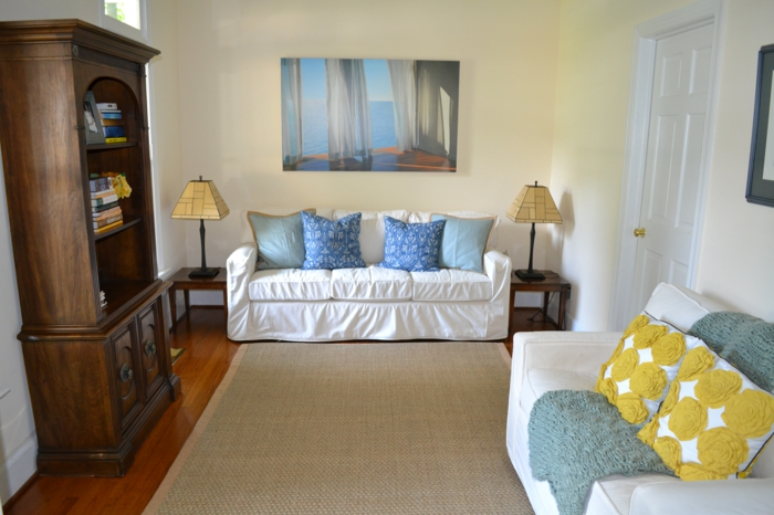 un-tapis-sisal-ou-jonc-de-mer-tapis-idée-comment-aménager-son-salon-sofa