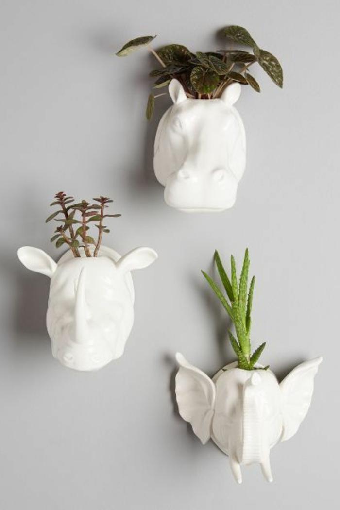 Savourez la beaut de la plante d int rieur dans notre galerie - Mur de fleur interieur ...