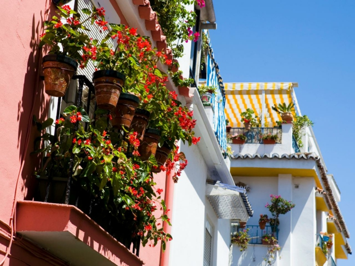 1-jardiniere-balcon-beaucoup-de-fleurs-pour-bien-amenager-votre-balcon-moderne