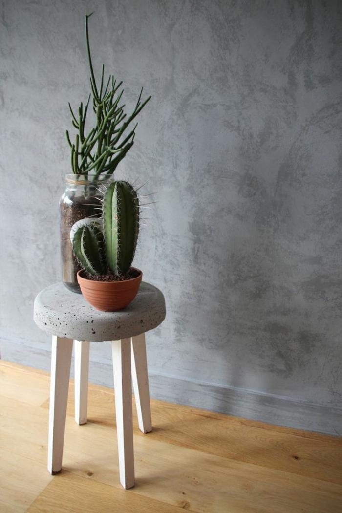 1-jolie-decoration-avec-plantes-d-interieur-fleuries-cactus-vert-pour-linterieur-de-la-maison