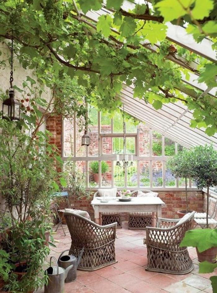 1-jolie-variante-pour-votre-véranda-en-kit-plafond-sous-pente-en-verre-et-plantes-vertes-d-interieur-pour-la-veranda