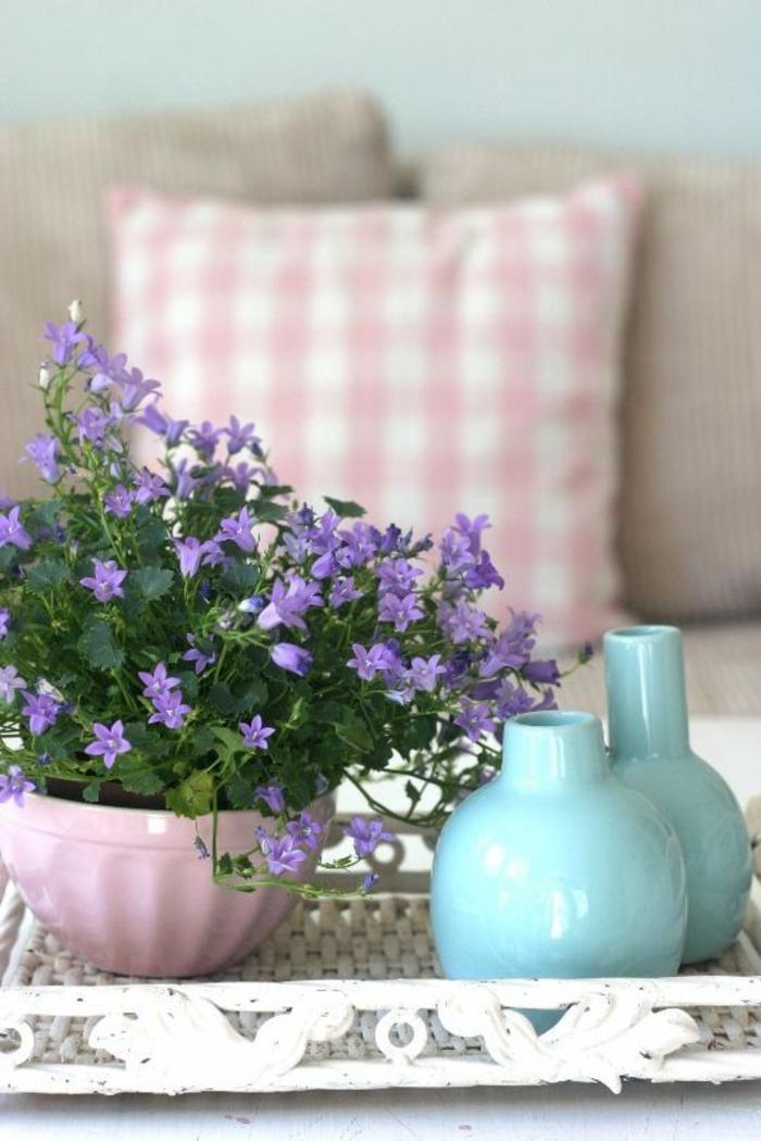 1-plante-d-intérieur-plante-exotique-intérieur-fleurs-dans-le-salon-et-decoration-pour-la-table