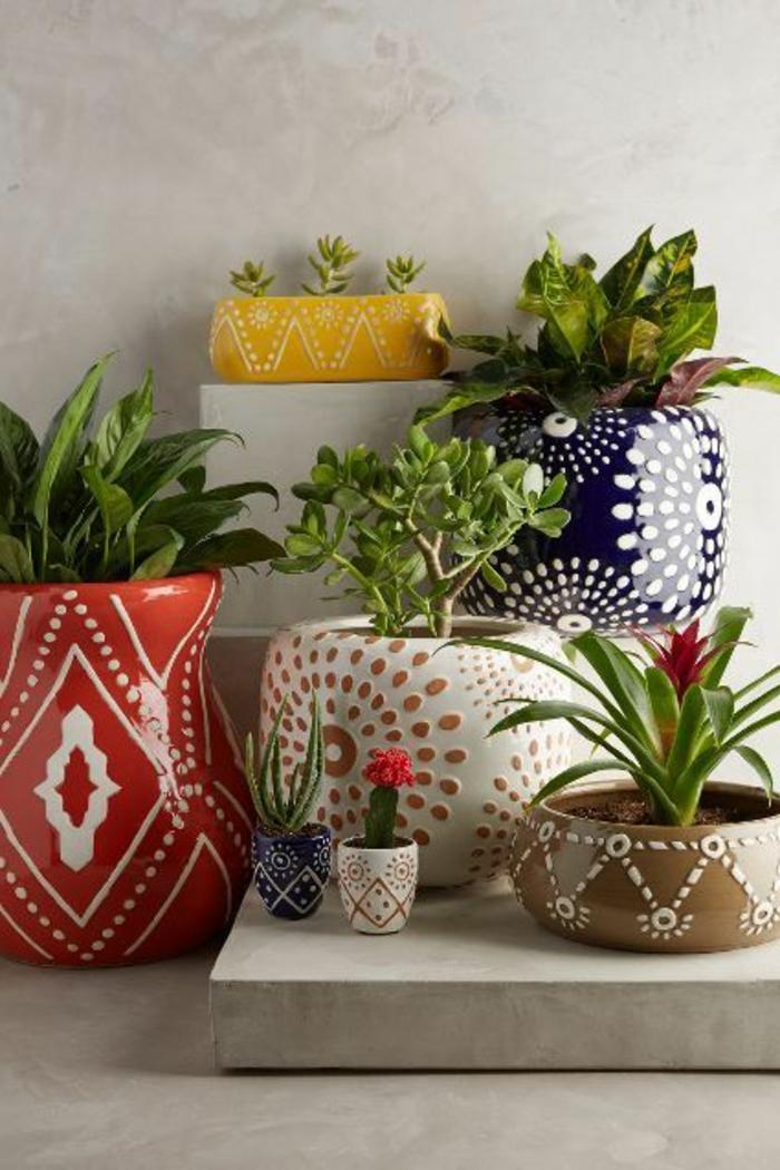 1-plantes-d-interieur-depolluantes-comment-bien-decorer-l-interieur-avec-plante-verte