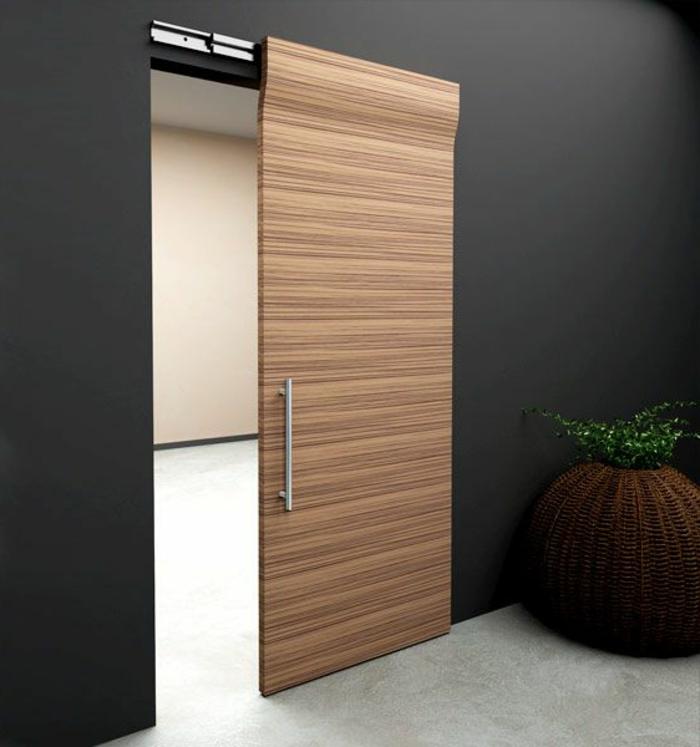 1-porte-coulissante-à-galandage-en-bois-clair-mur-noir-plante-verte-d-intérieur