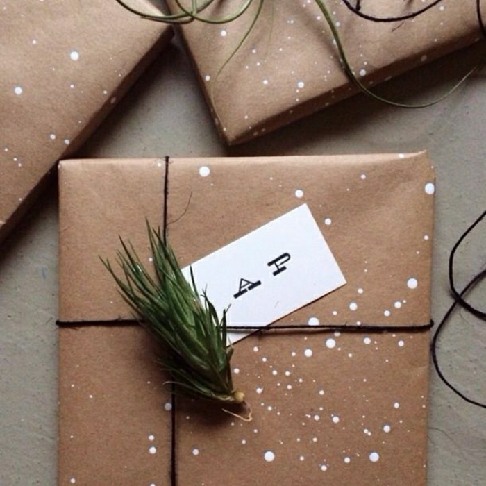 1-une-jolie-papier-cadeau-original-avec-une-branche-vert-decoration-avec-branche