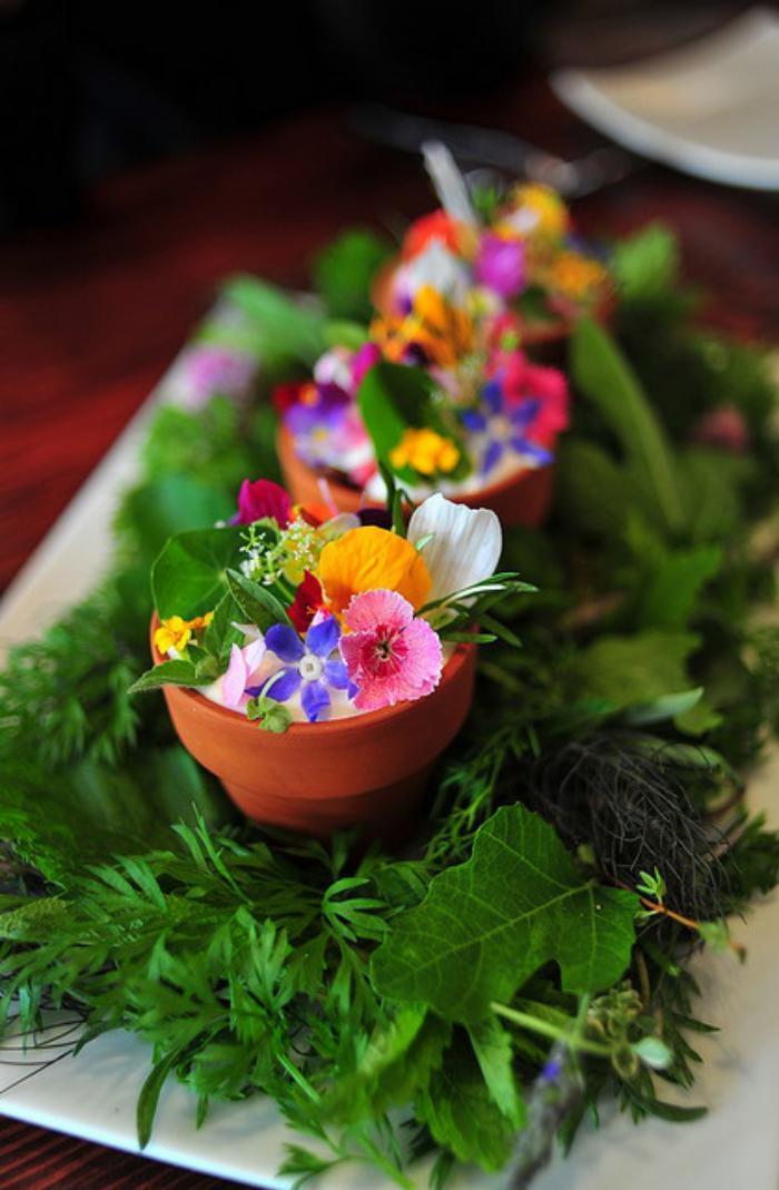 assiette-gastronomique-décoration-avec-légumes-verts