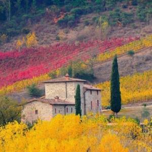 Le plus beau paysage d'automne? Voyez nos propositions!