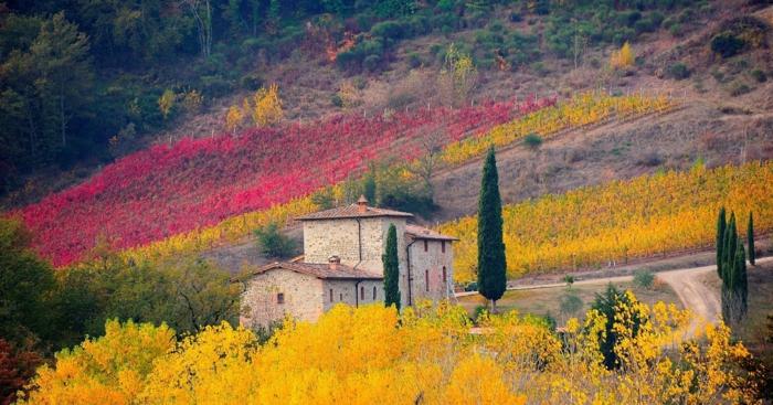 automne-paysage-nature-feuilles-automne-fond-d-ecran-tuscanie