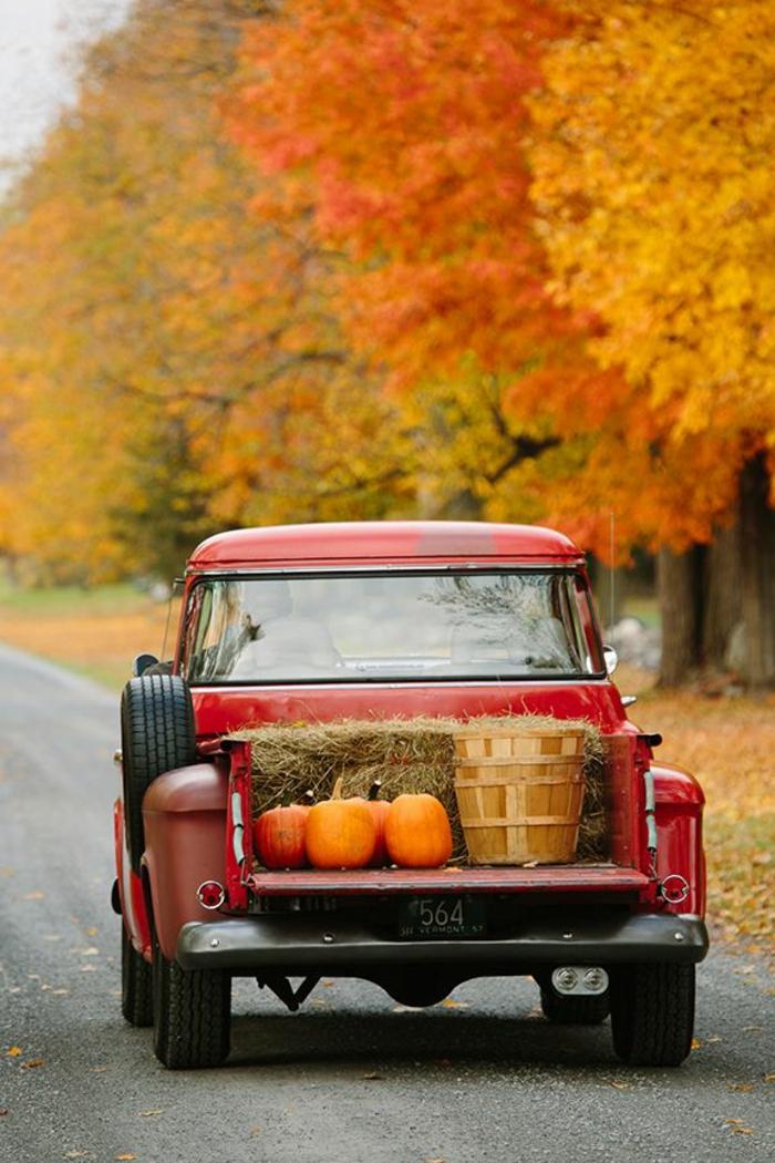 automne-paysage-nature-feuilles-automne-voiture-citrouille