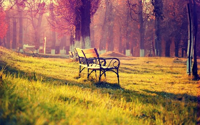 belle-image-à-télécharger-paysage-d-automne-jolie-à-la-une-anc-parc
