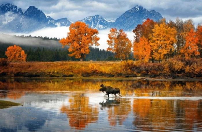 belle-image-à-télécharger-paysage-d-automne-jolie-nature