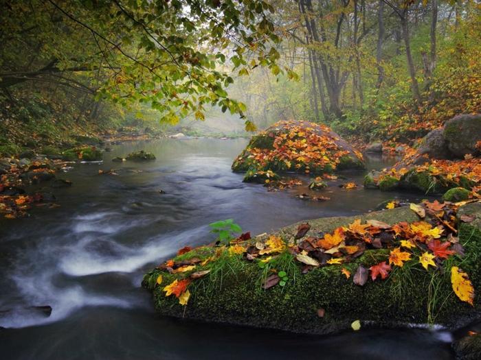 belle-image-à-télécharger-paysage-d-automne-jolie-rivière