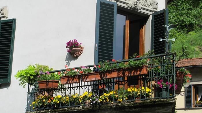 bien-choisir-les-fleurs-de-balcon-fleurir-son-balcon-avec-ces-jolis-fleurs-colorés