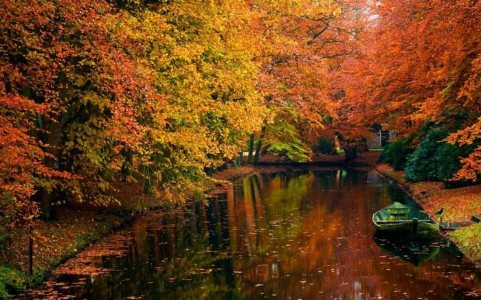cannal-arbres-beauté-en-automne-paysage-eau-feuilles-orange-jaune