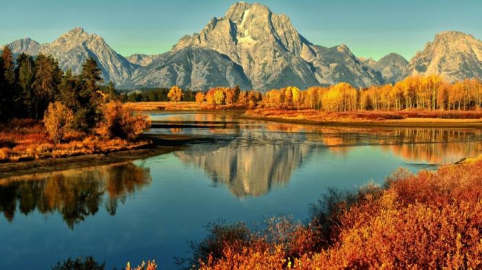 feuilles-d-automne-beau-paysage-tableau-beauté-de-montagne-magnifique