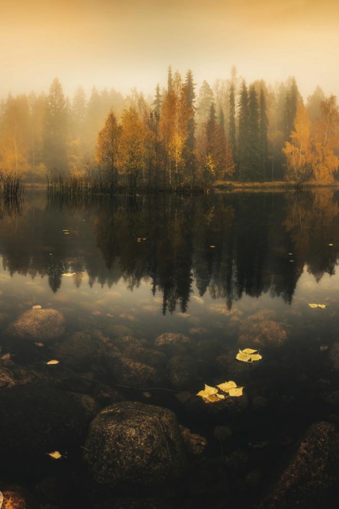 feuilles-d-automne-beau-paysage-tableau-belle-lac-arbres-paysage-sombre
